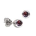Sterling Silver January Birthstone Stud  Earrings