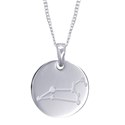 Amante Sterling Silver Leo Constellation Disc Pendant with Necklace